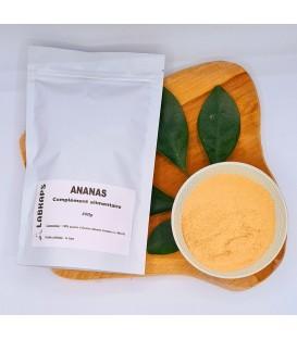 ANANAS POUDRE - 500 g