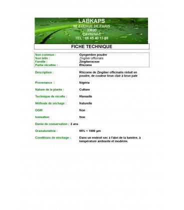 GINGEMBRE POUDRE - 250 g